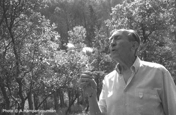 1996, près d'Aniane (photo A.Hampartzoumian)